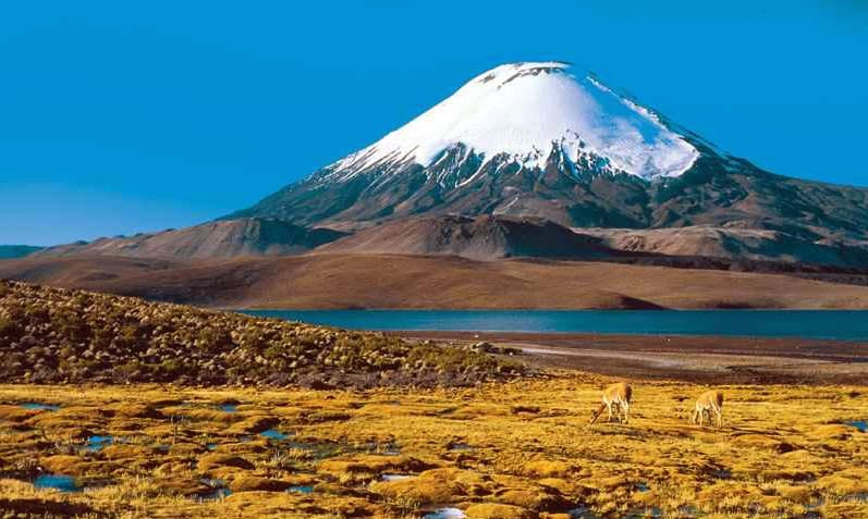Altiplanos andinos