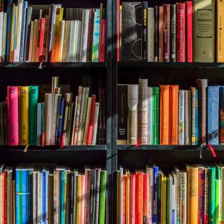 14 livros que inspiraram jogos de tabuleiro