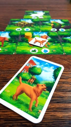 Jogo de tabuleiro PETS